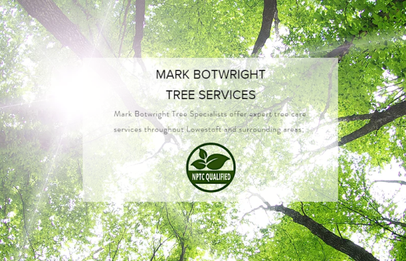 Tree Surgeon Services Lowestoft Suffolk.2