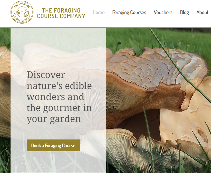 Foraging Courses Walks & Wild Food Foraging Walks